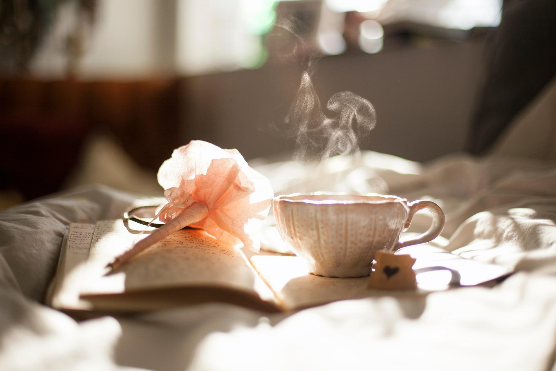 Kaffeetasse, Buch, Stift, Seidenblume, Keks